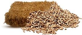 Биотопливо и комбикорм из отходов сельхозпереработки