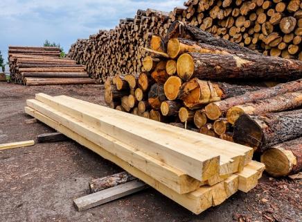 Что делать с отходами лесопиления?